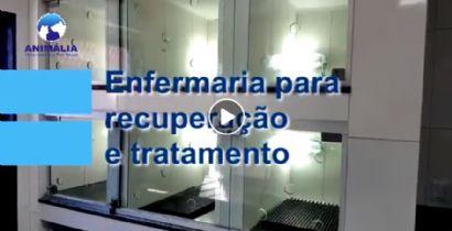 ENFERMARIA PARA RECUPERAÇÃO E TRATAMENTO